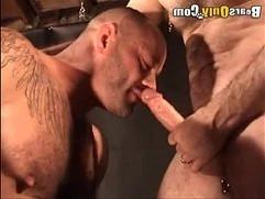 Daddy Bear Gets Himself A Nice Playmate